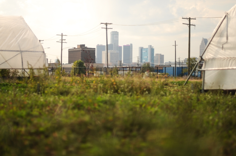 Downtown seen from the Eastern Market Corp. greenhouses